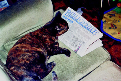Cat can read! What a great choice - Bibliophile\'s CAT-a-logue.\\n\\n10/02/2011 12:32