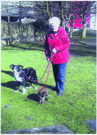 Customer Cath Wilkinson, Oliver the collie and Bramble the cat (ON A LEAD!)\\n\\n09/10/2012 14:39